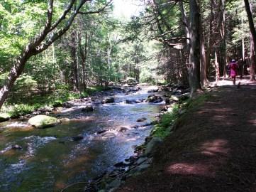 River through Bushkill Falls