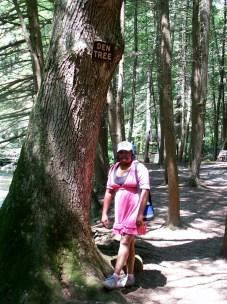 Lauren enjoying the Hiking tail at Bushkill Falls.