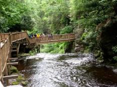Bridge Crossing the River at Bushkill Falls