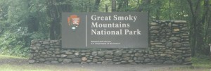 Taken on our Road Trip to the Smoky Mountains