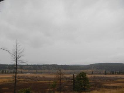 Rural BC