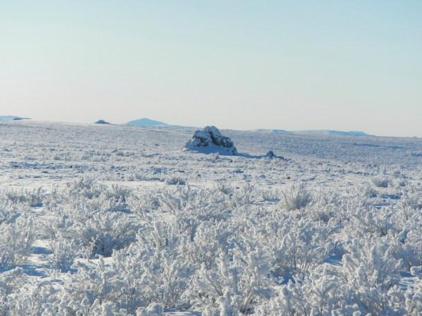 Frozen Tundra | Northern Alska