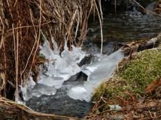 Ice forming detail Valdez AK