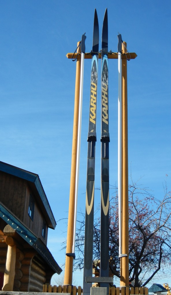 Giant Cross Country Skis
