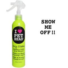Dry Clean, waterless shampoo