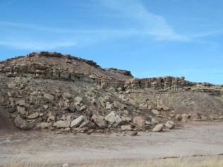 Petrified Forest Arizona 006