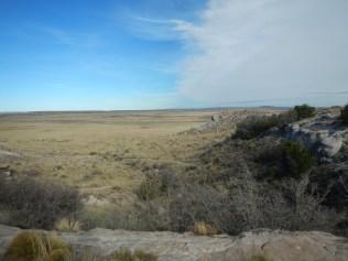 Petrified Forest Arizona 016