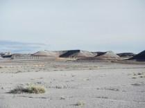 Petrified Forest Arizona 023