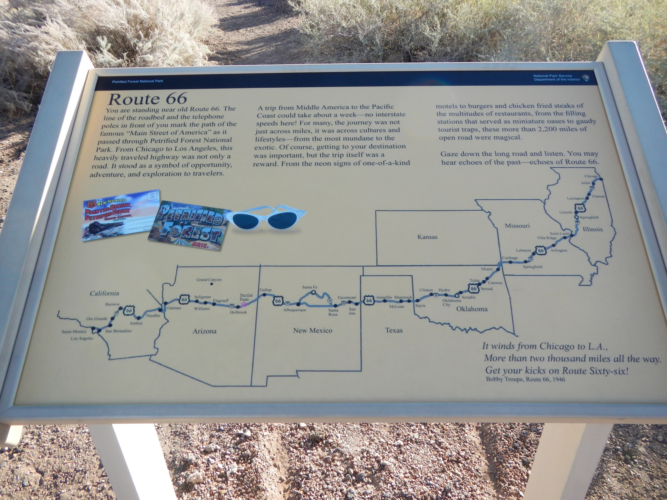 petrified forest tourist map The world