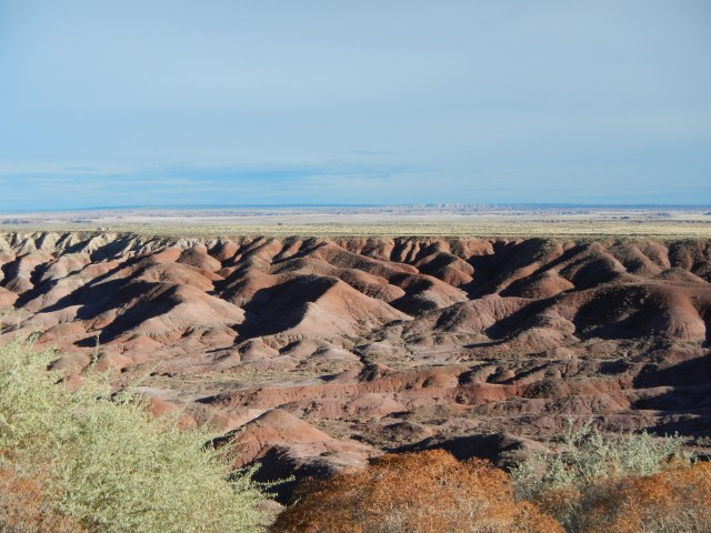 Petrified Forest Arizona 034