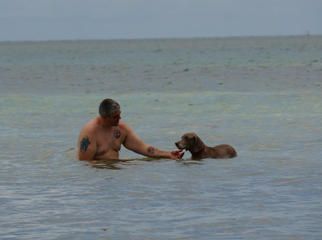 Zoe getting some love at Anne's Beach  Pet Friendly Florida Keys