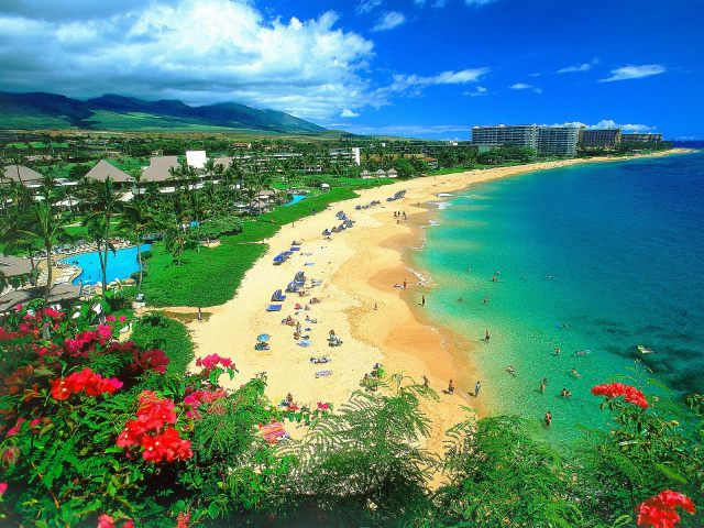 Hawaii-Pic