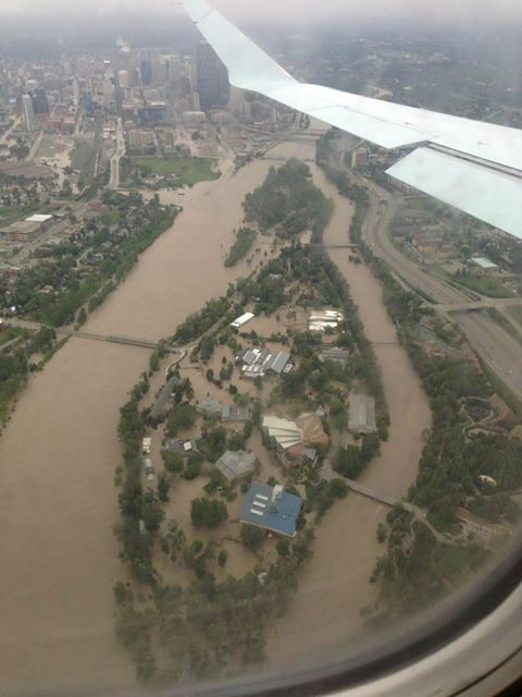 What the Calgary Zoo looked like during the Flood