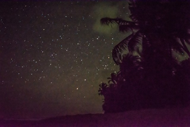 Night sky at Matura Beach
