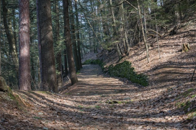 Watkins Glen Gorge hike with Ranger Outfitters