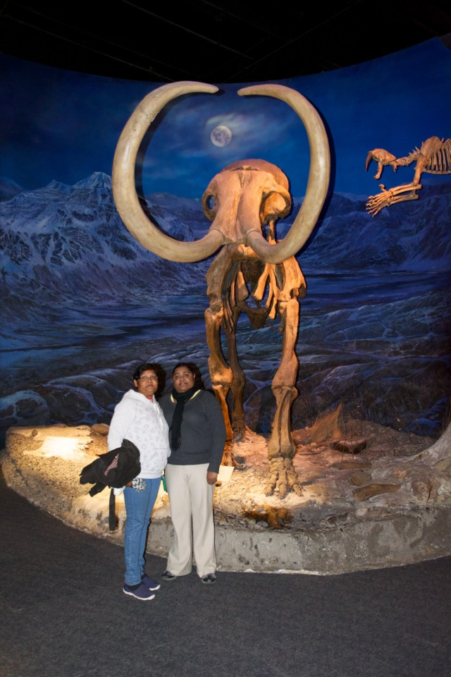 Mammoth of a time at the Royal Tyrell Museum