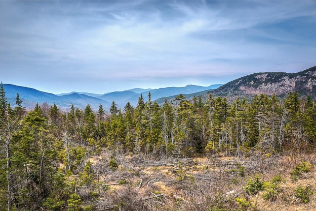 White Mountain National Forest, New Hampshire