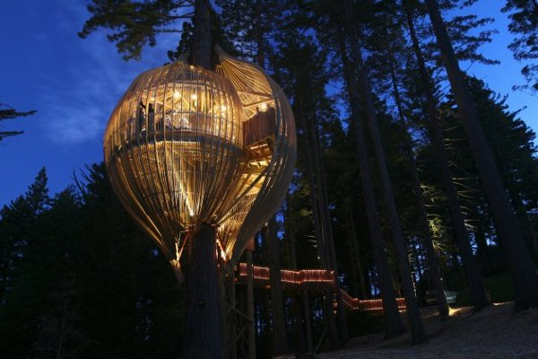 yellow-treehouse-restaurant_1