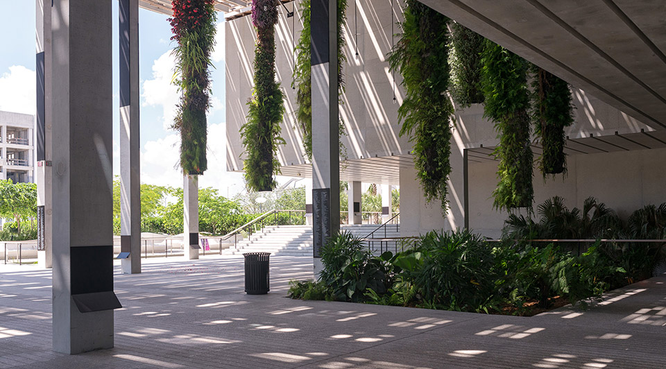 Perez Art Museum Miami - Photography by Seamus Payne - 31