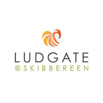 WEST CORK: Ludgate Business Hub is a success