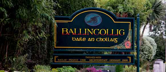 Let me tell you about a Festival in Ballincollig