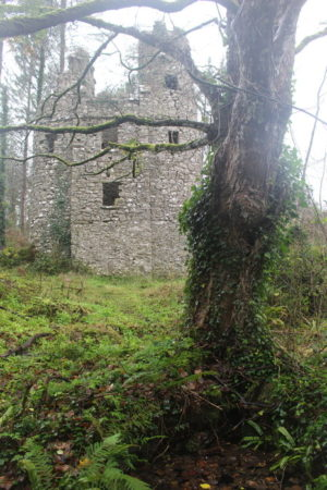 Buy a castle in Cork, Ireland for just €95,000 ($105,500)