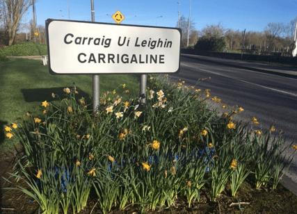 Carrigaline News