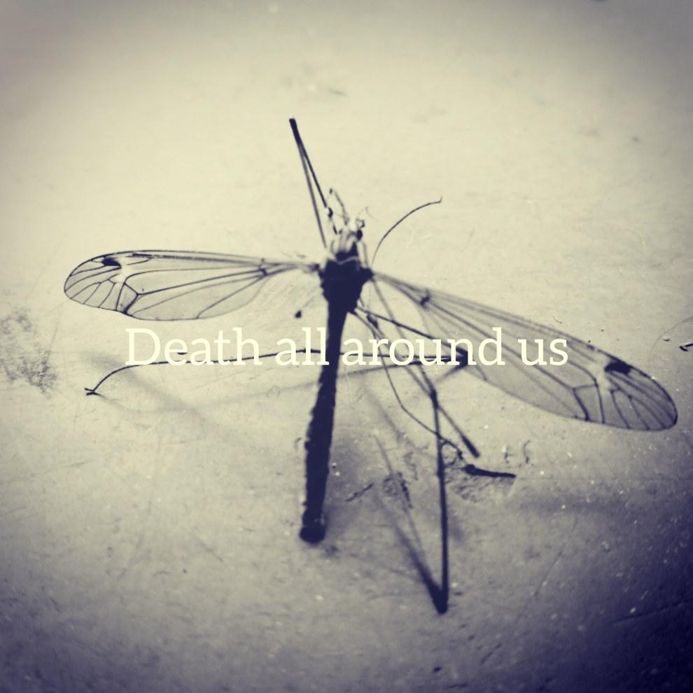 Death all around us