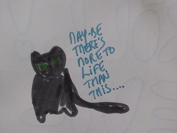 philosopher cat
