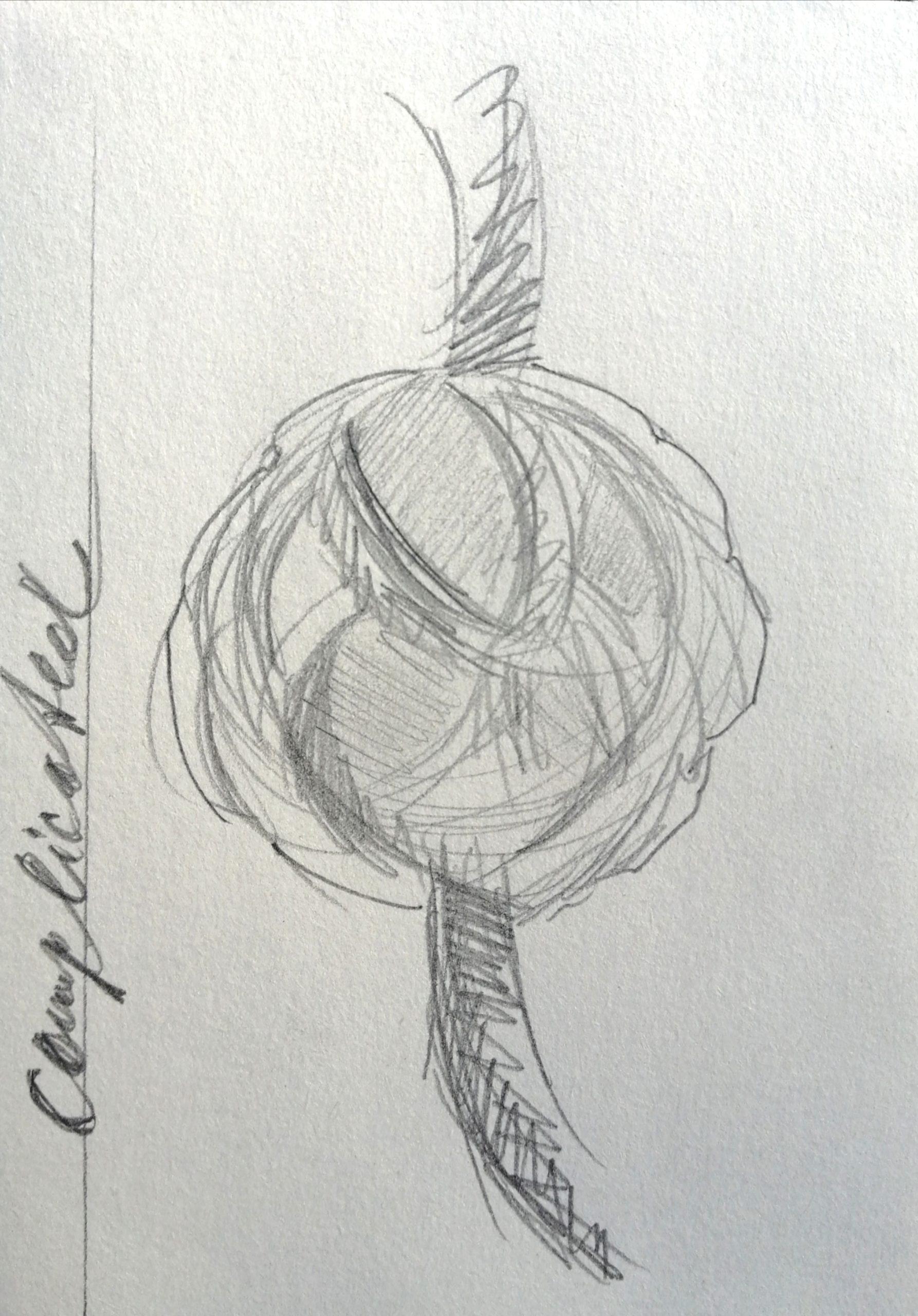 Gordian Knot