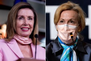 Pelosi reportedly trashed Birx in meeting with White House officials