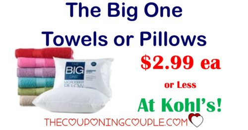 the big one pillows or towels 2 99