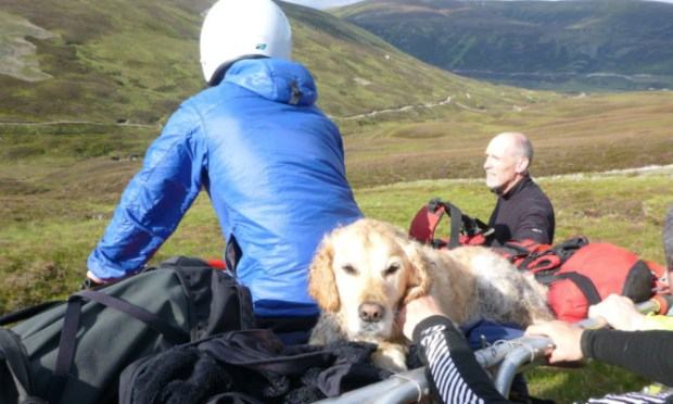 The mountain rescue team prepare to carry Beinn back to safety.