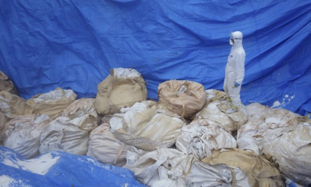 A worker stands on top of bags of dead chickens after H5 virus was detected in two birds in western Japan.