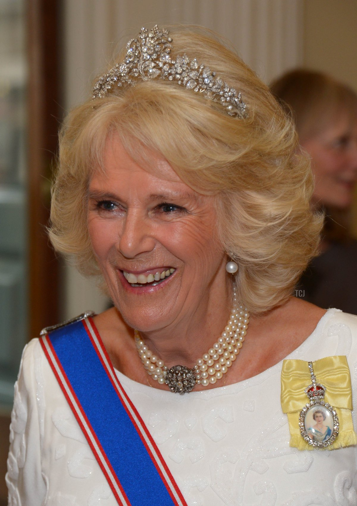 Camilla, Duchess Of Cornwall attends the Royal Academy Annual Dinner to celebrate the Summer Exhibition, opening to the public on 8 June, at Royal Academy of Arts on June 2, 2015 in London, England