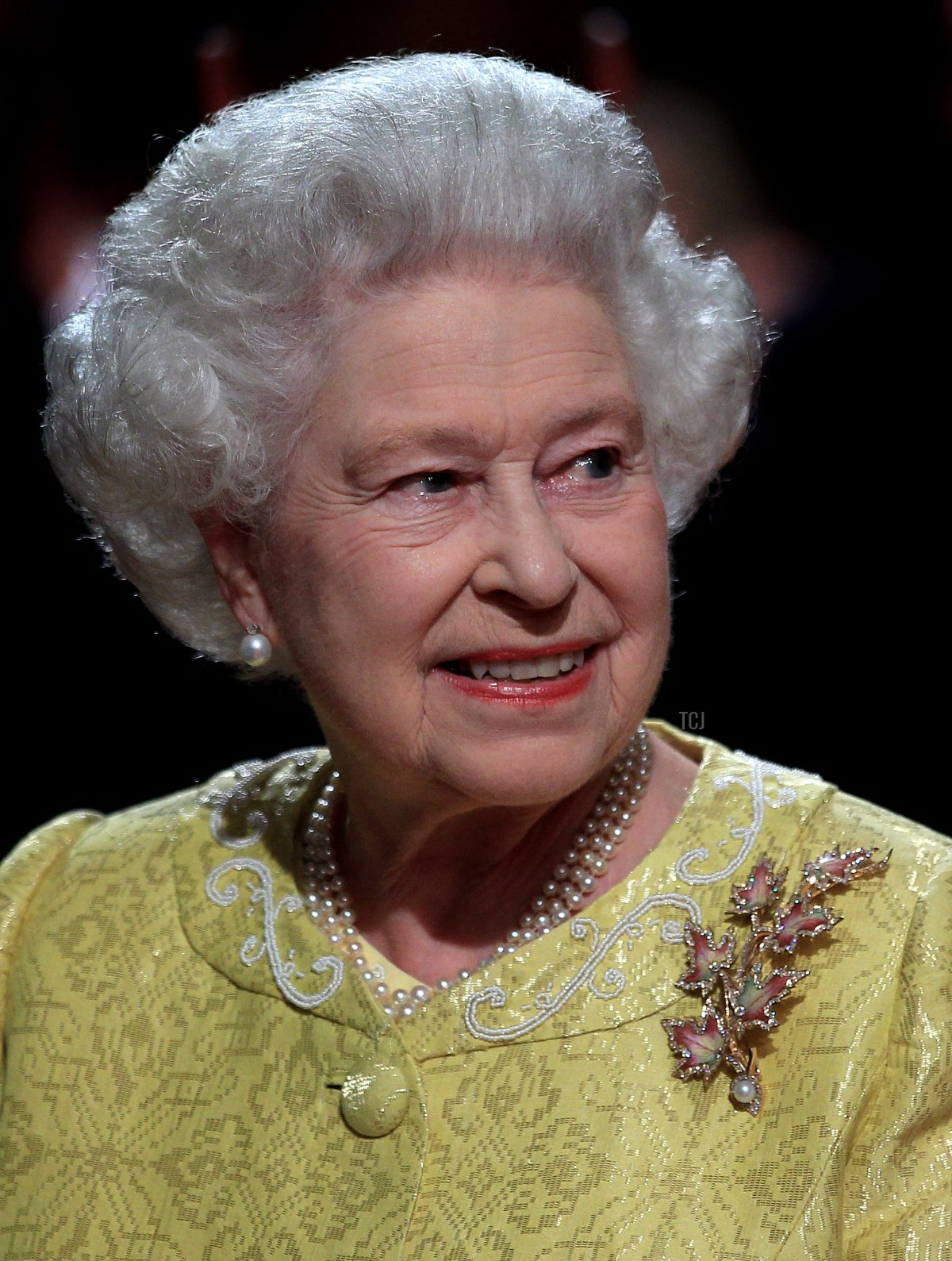 """Queen Elizabeth II attends a reception for """"A Celebration of Novia Scotia"""" at the Cunard Centre on June 29, 2010 in Halifax, Canada"""