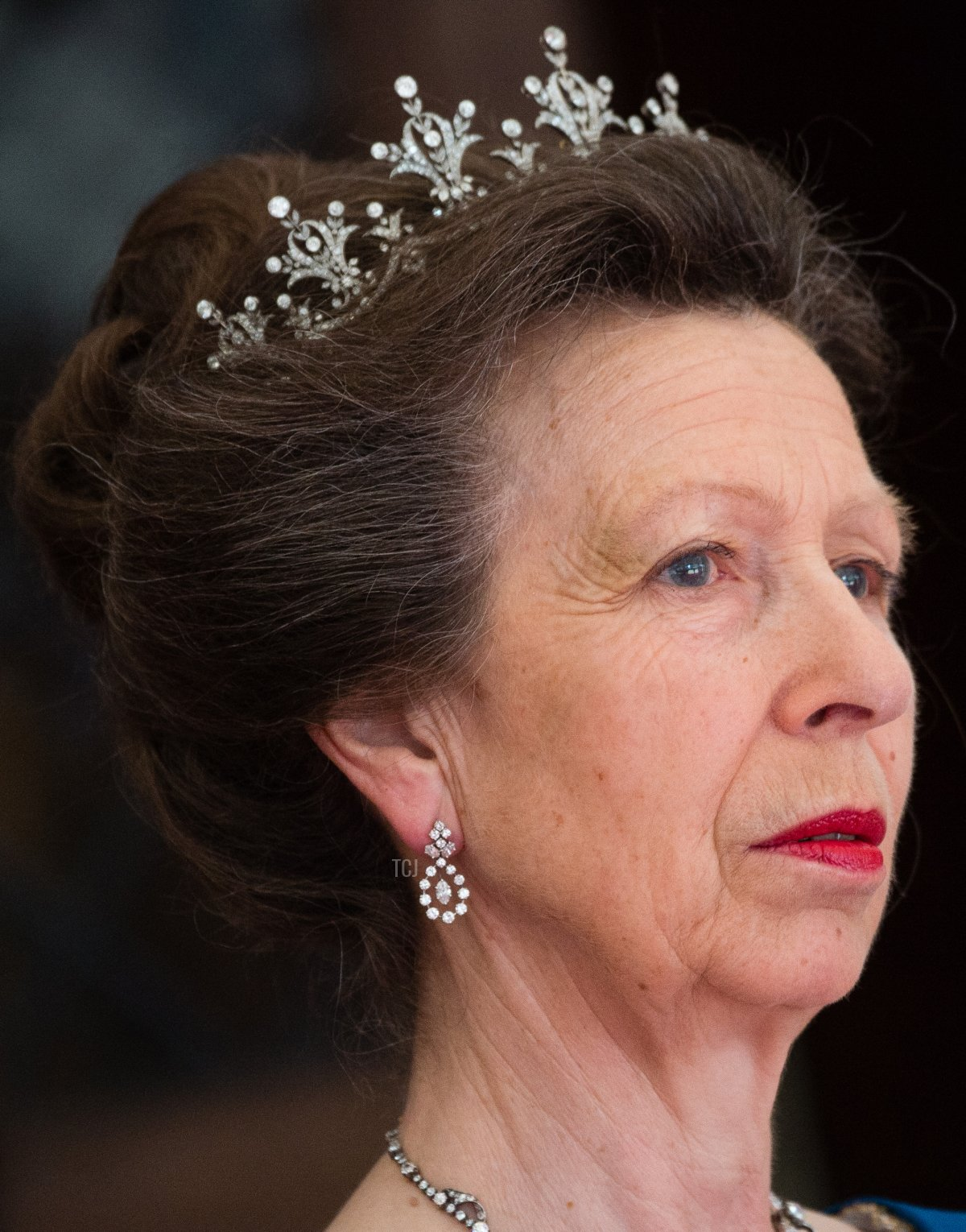 Princess Anne, Princess Royal attends the Lord Mayor's Banquet at the Guildhall during a State visit by the King and Queen of Spain on July 13, 2017 in London, England