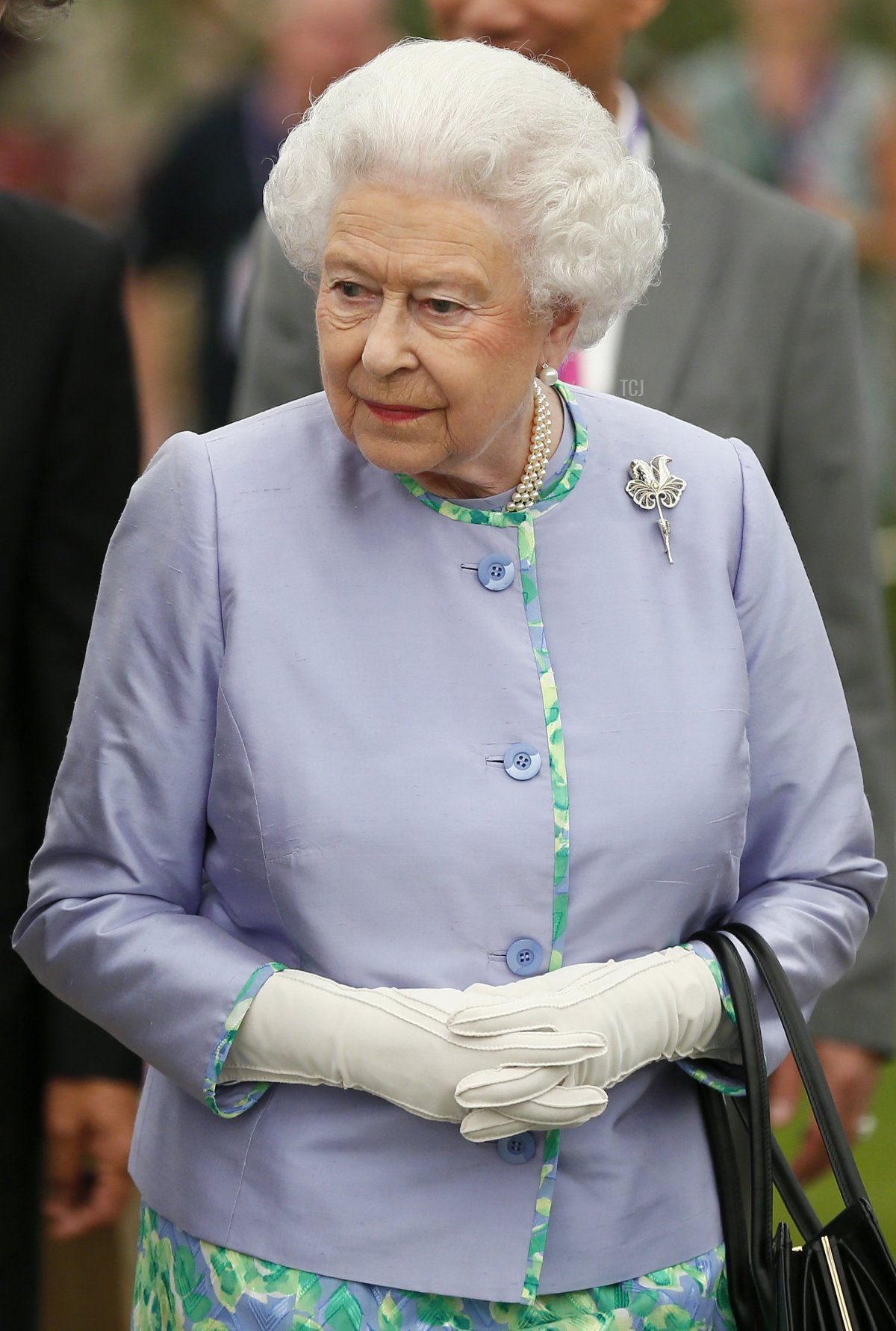 Queen Elizabeth II looks at a dispaly during a visit to the Chelsea Flower Show on press day on May 19, 2014 in London, England