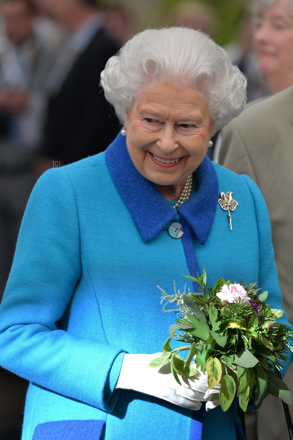 Queen Elizabeth II attends the annual Chelsea Flower show at Royal Hospital Chelsea on May 18, 2015 in London, England