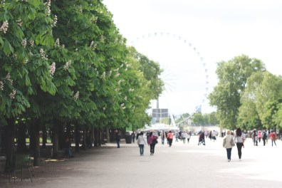 Walking the Tuileries Gardens