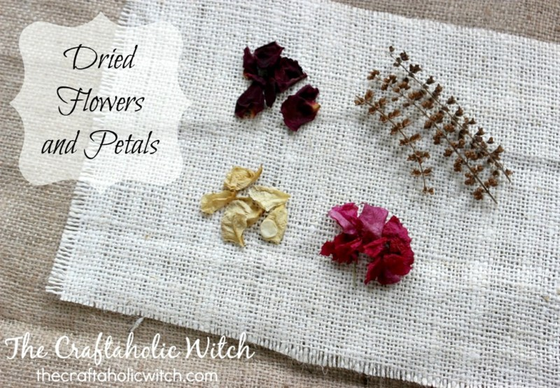 dry petals flowers