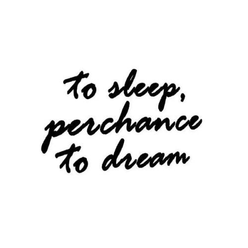 To Sleep Perchance to Dream Pillowcase