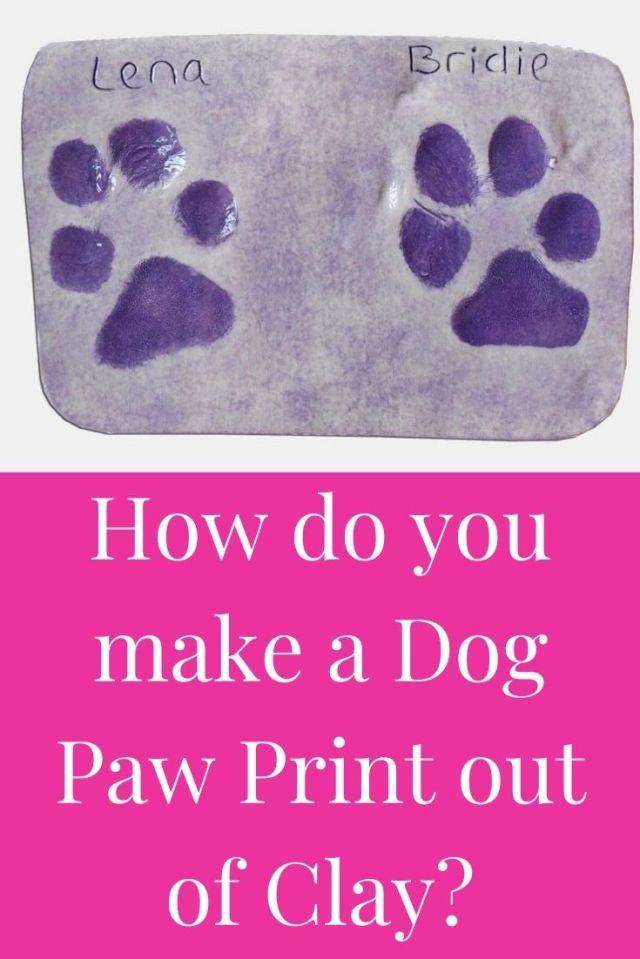 How do you make a Dog Paw Print out of Clay?