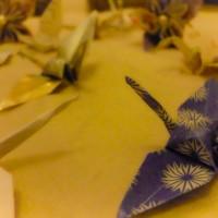 Close up origami