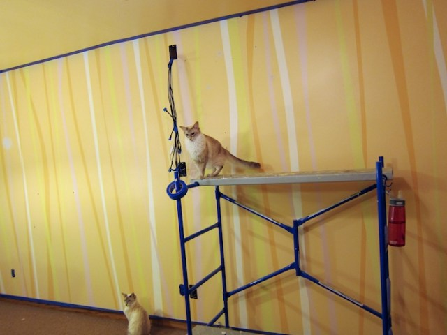 paint_striped_wall1