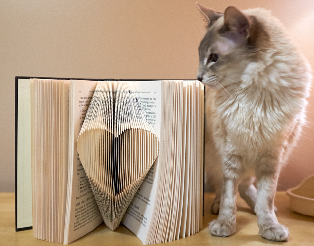 Book folding: heart (with cat)
