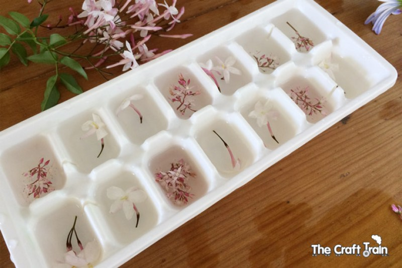 flower-ice-cubes3