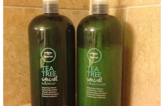 Tea Tree Shampoo and Conditioner Paul Mitchell Review