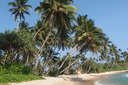 Sri Lanka, the land of magic!