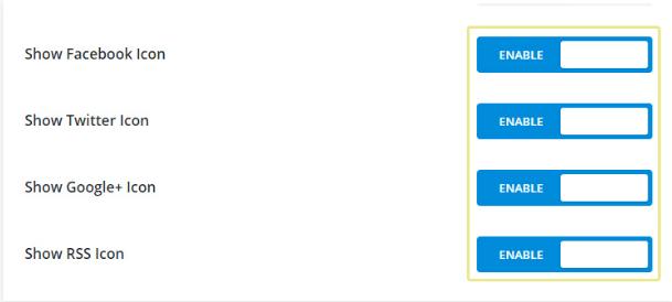 social_icon_admin_Settings_divi